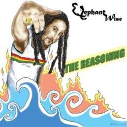 The Reasoning album cover