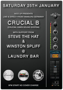 Crucial Vibes Sound System